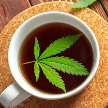 Cannabis Tea and Consumption Options